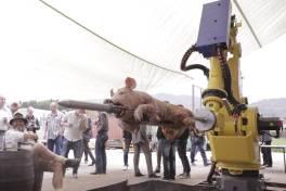 Erfolgreiches Robotik-FACHFORUM