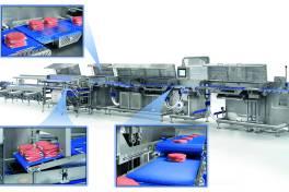 Modulare Hamburger-Produktionslinie