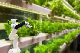 Digitalisierung ermöglicht nachhaltigere Agrarwirtschaft