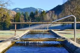 Sichere Trinkwasserversorgung für Zwischenwasser