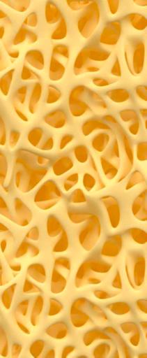 Vorbild für die Lattice-Strukturen ist die Evolution, hier die variable Mikrostruktur in einem Knochen.